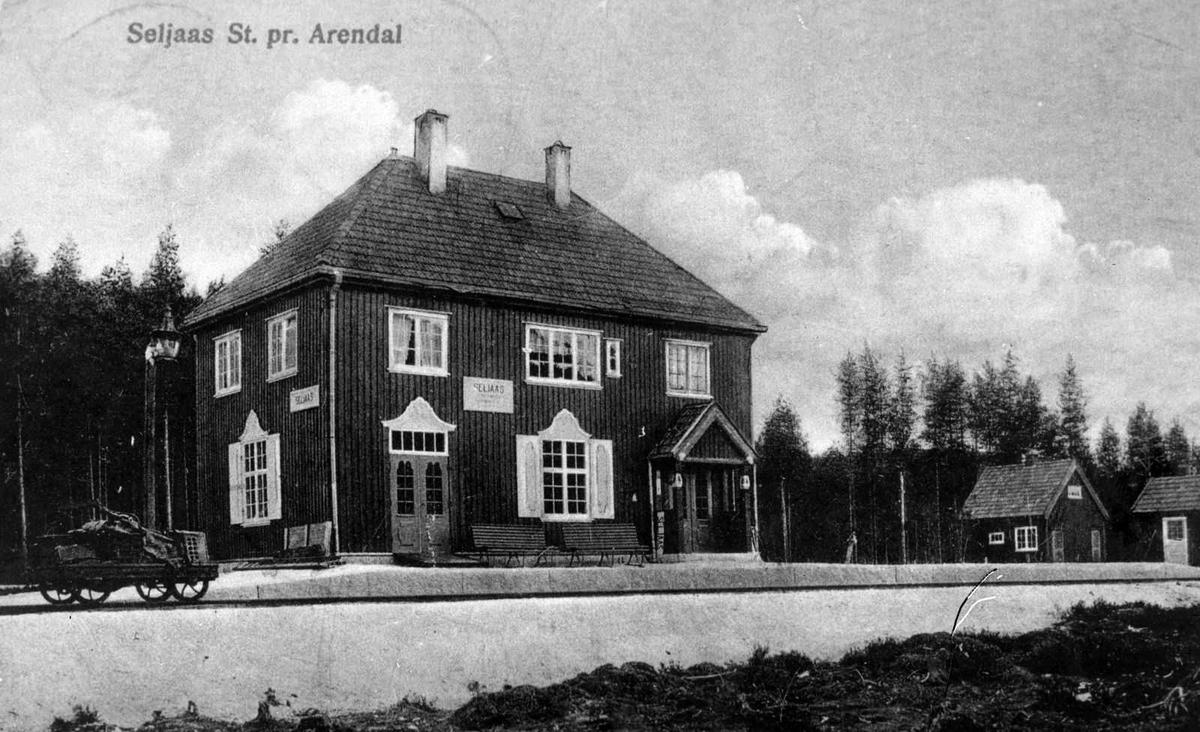 Åmlibilder samlet av Åmli historielag Seljås jernbanestasjon
