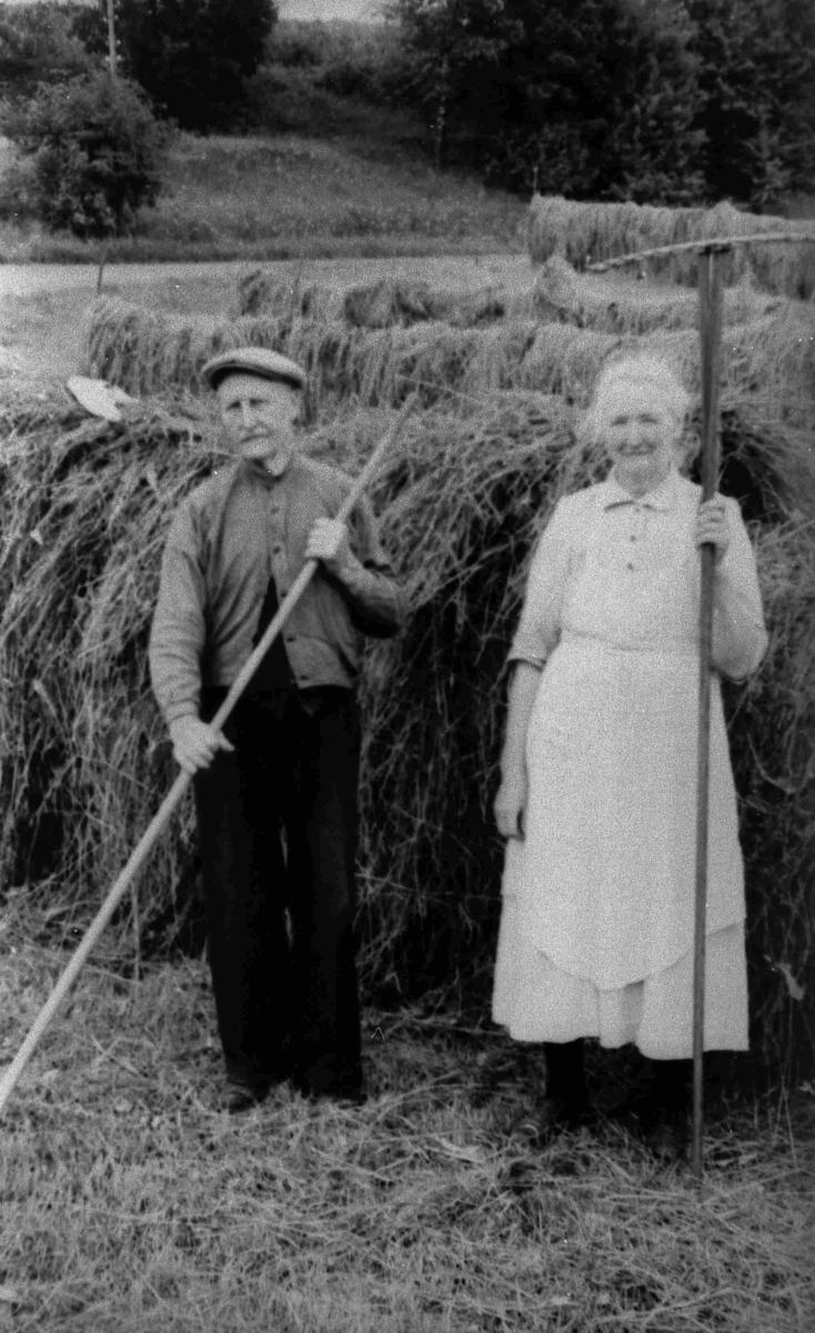 Bilder fra Birkenes kommune Gunille og Osluld Stoveland i 1954