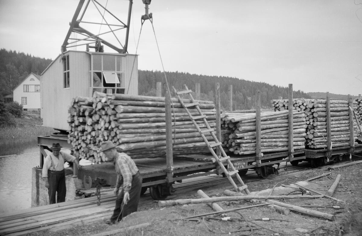 Lossing av virke ved tømmerkranen på Skulerud. Tømmeret ble fløtet videre i Haldenkanalen.