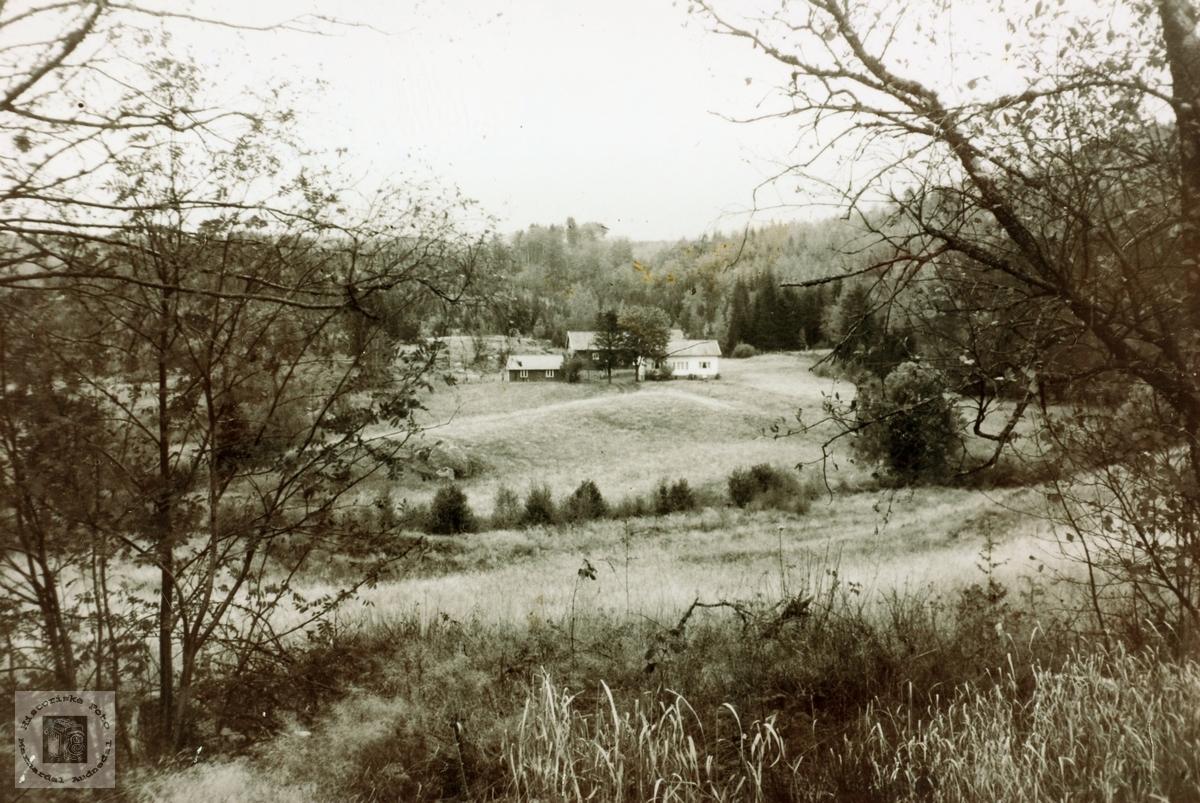 """Garden """"Kronå"""" på Strisland i Konsmo nå Audnedal."""