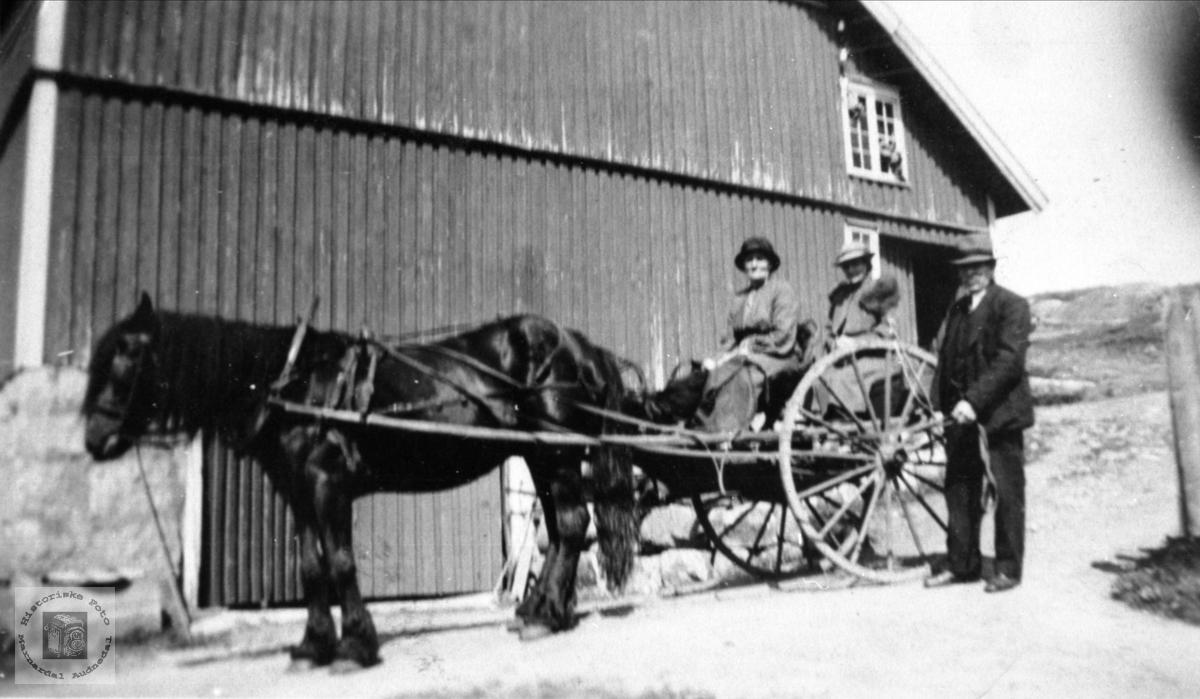 Karjoltur fra Hallingsgård til Mjåland.