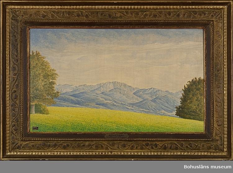 I förgrunden gröngult fält med träddungar på sidorna. I bakgrunden blånande berg.