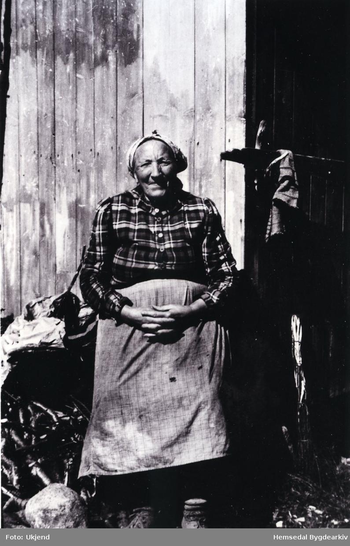 """Guri Liheim (1873-1960) Store Guri vart att åleine med 4 mindreårige born. Ho måtte ta teneste """"uttafør"""" (utanfor bygda) om vinteren , om sumaren var ho onnejente."""