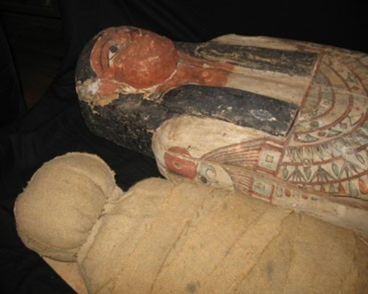 Mumiekista för en man, Iset-Min, son till Pedinefer-Nedjem och Iwain-Her. Under peruken syns en bred halskrage med ändstycken utformade som falkhuvuden. Mitt fram en skarabé (tordyvel) med solklotet en symbol för återuppståndelsen. Inskriftsraden omges av de så kallade Horussönerna vilka hade till uppgift att skydda den dödes inälvor: Amset (med människohuvud) som skyddar mage och tarmar, Kebekhsenuef (med hökhuvud) som skyddar lever och galla, Hapy (med babianhuvud) som skyddar tarmar samt Duamutef (med schakalhuvud) som skyddar hjärta och lungor. Kistan är något påbättrad under 1800-talet. Den innehåller en förfalskad mumie tillverkad av äldre lindor på 1800-talet.
