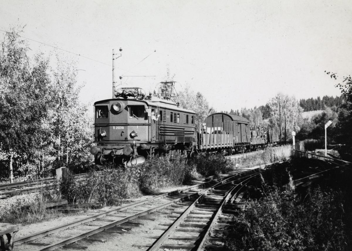 Godstog på Kongsvingerbanen trukket av El 5 2039 passer Bingsfoss.