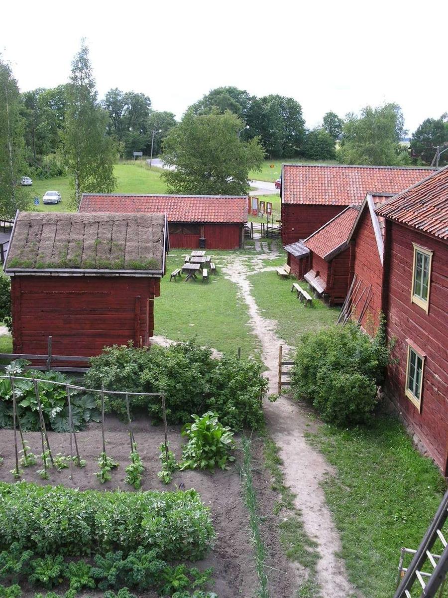 Kålgården på friluftsmuséet Disagården, Gamla Uppsala, juli 2007