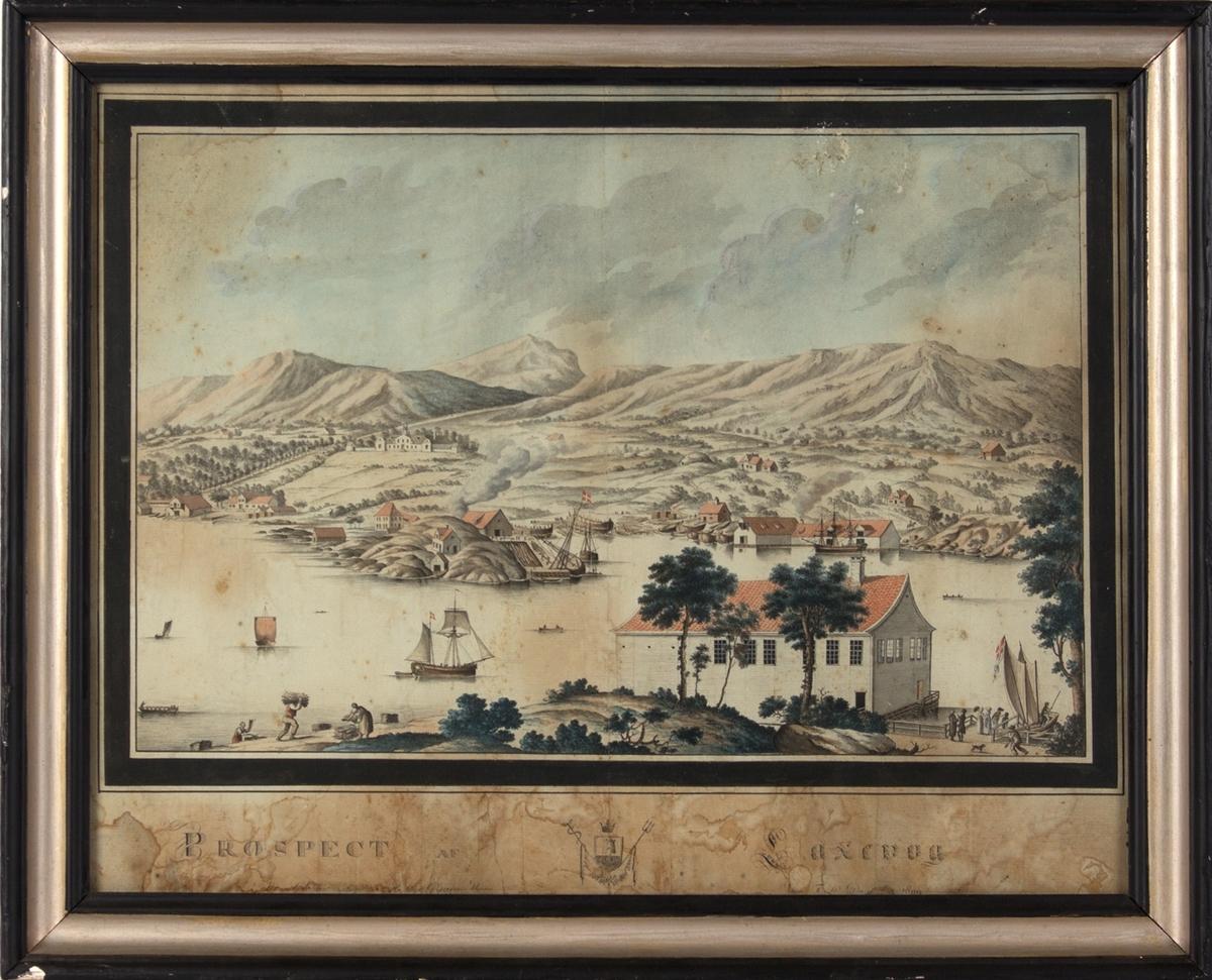 Prospect af Laxevaag, Grans hus og Graneverftet omkring 1809