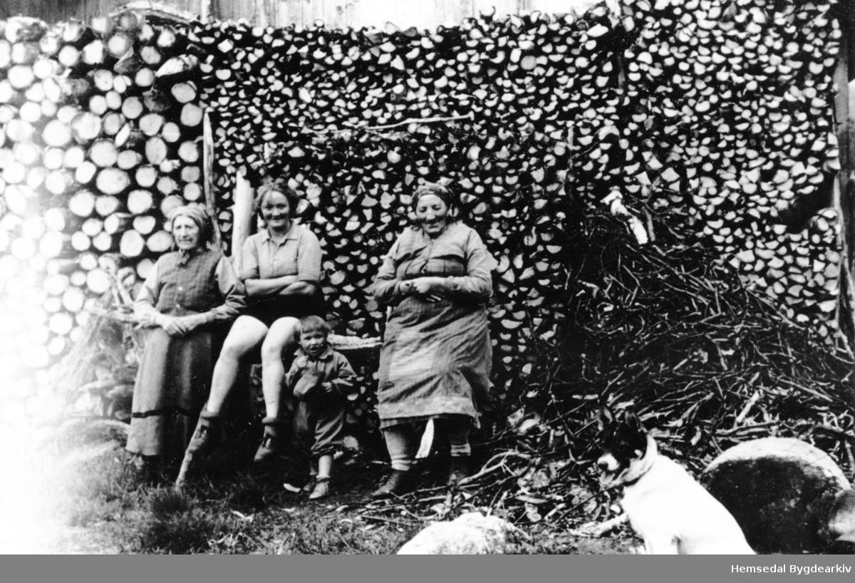 Fyre med ved! Frå venstre: Ingrid Snikkerbrøten, to byungar og Guri Liheim (1873-1960). Ingrid var sambuar med Knut O. Venås og svigerinna til Guri. Ho budde i ei stugu på andre sida av RV52, like ved Liheim.