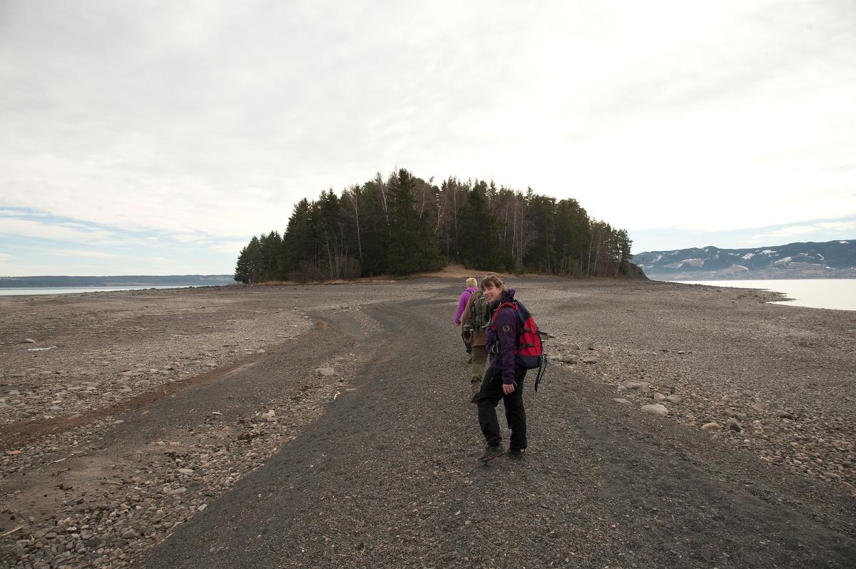 Om våren når vannstand i Mjøsa er lav så er Hovinsholmen, Helgøya landfast. Her  er Linda Fredriksberg, Terje Syversen og Aina Syversen på veg over til holmen.
