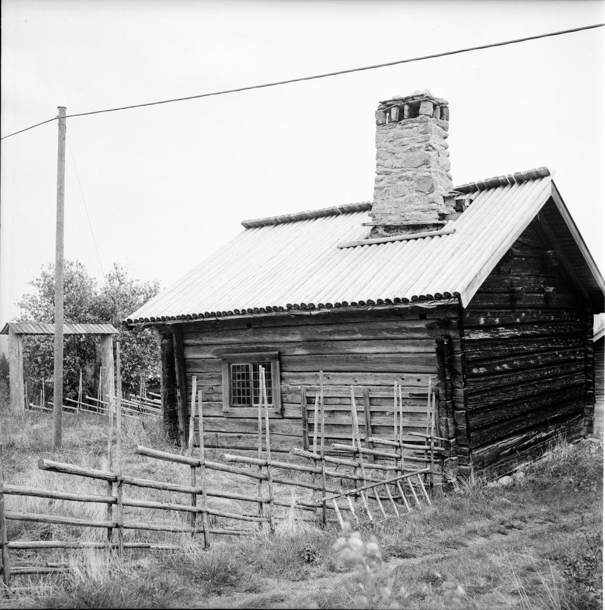 Remsgården i Härjedalen. Juni 1972