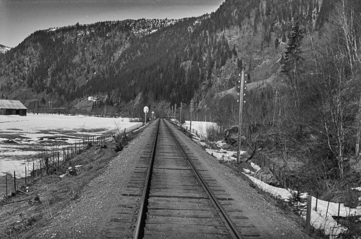 Langs Rørosbanen, nær Rognes stasjon. Innkjørsignal B skimtes i bakgrunnen.