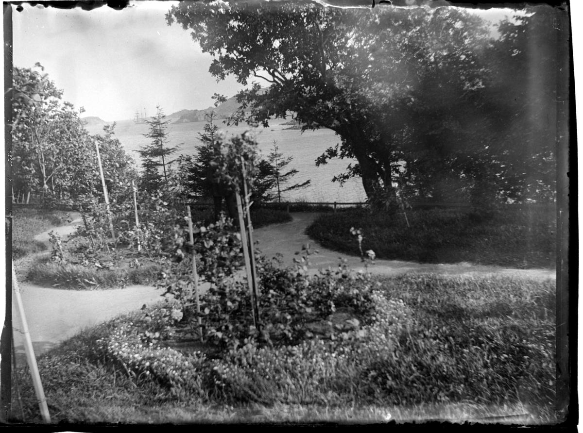 Farøyparken på Farøy ved Farsund. Fotografert 1900-1903.