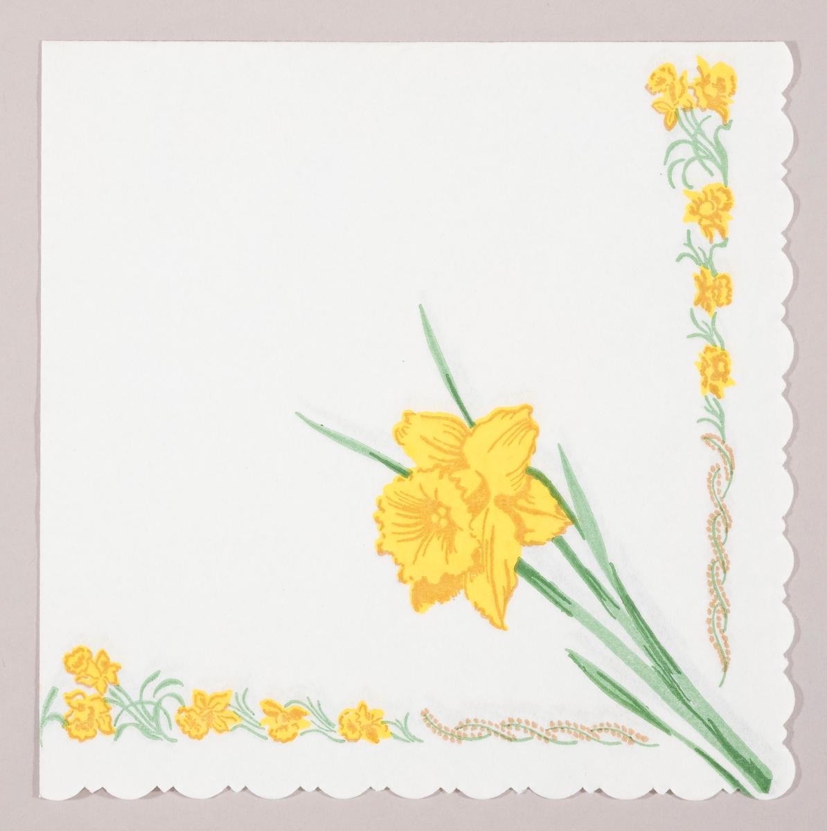 En påskelilje. Små påskeliljer langs kanten sammen med et bånd av rakler.