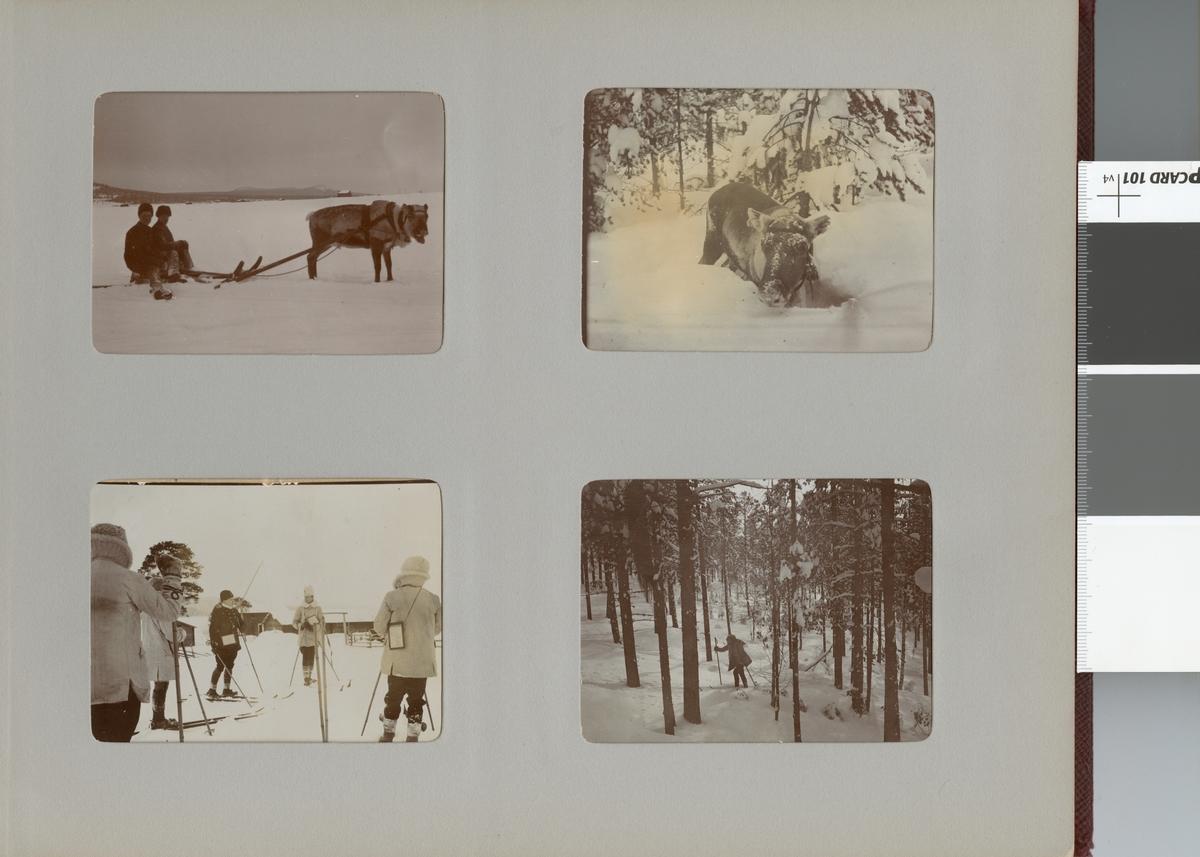Män och ren i vinterlandskap, Smålands husarregemente K 4 på vinterövning i Norrbotten omkring 1910.