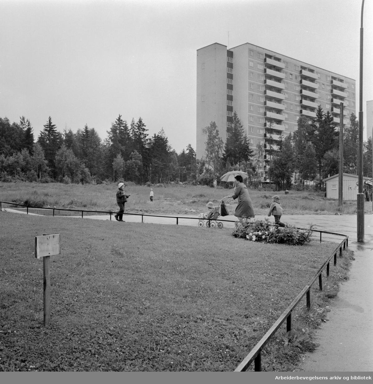Bøler. Høyblokkene i Bølerlia. Juni 1963