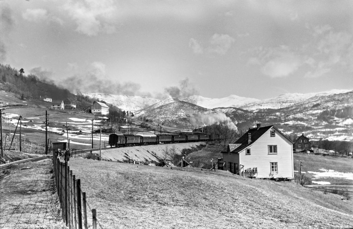 Påsketog retning Oslo Ø, tog 7688, ved Gjerdåker, vest for Voss. Toget trekkes av damplokomotiv type 31b nr. 402.