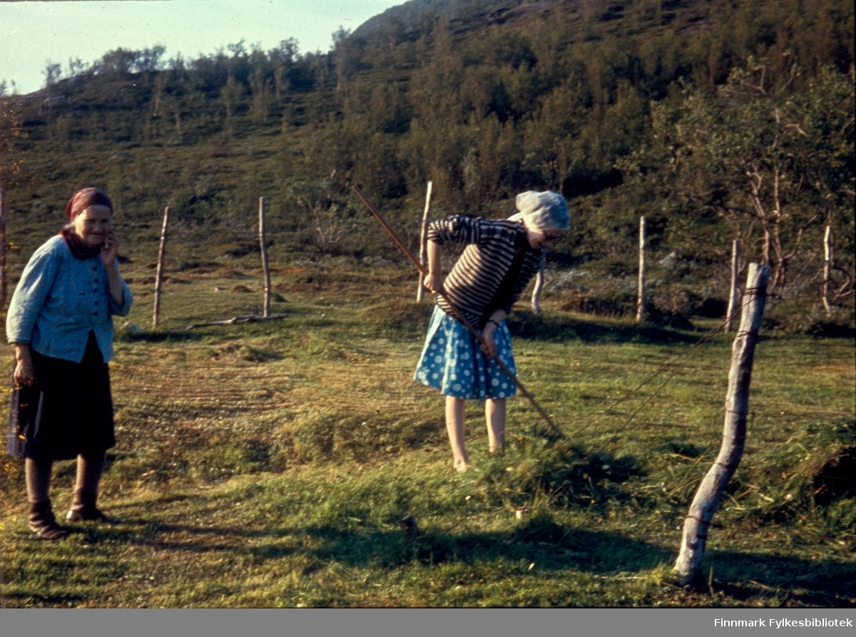 """Kunes, sommeren 1963. Slåttonn. Inga Johansen (""""Gammel-Inga"""") og hennes datterdatter Anny Tornvik. Kunes (samisk: Gussanjárga) er en bygd i Lebesby kommune i Finnmark. Stedet ligger innerst i Storfjorden. Fylkesvei 98 passerer igjennom Kunes. Fotografen, Richard Bergh, har også skrevet et hefte som heter: """"Når vi sitt' her og prate"""". Folk i Laksefjord forteller. Norsk Folkeminnelags skrifter nr. 122. H. Aschehoug & Co. (W. Nygaard). Oslo 1980. ISBN 82-03-10187-9"""