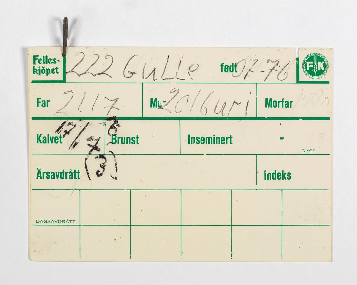 Skiltet er ferdig inndelt i felt. Det påføres nummer, navn og fødselsdato på ku (far, mor og morfar) og datoer for kalving og bedekking. Skiltet er et hvit rektangulært stykke plast. Bokstaver, linjer og ruter er påført med grønt strek. Det har blitt skrevet med svart tusj, som er lett å vaske vekk. Skiltet har to hull i øvre langside med metallkrampe på, til oppheng i fjøset.