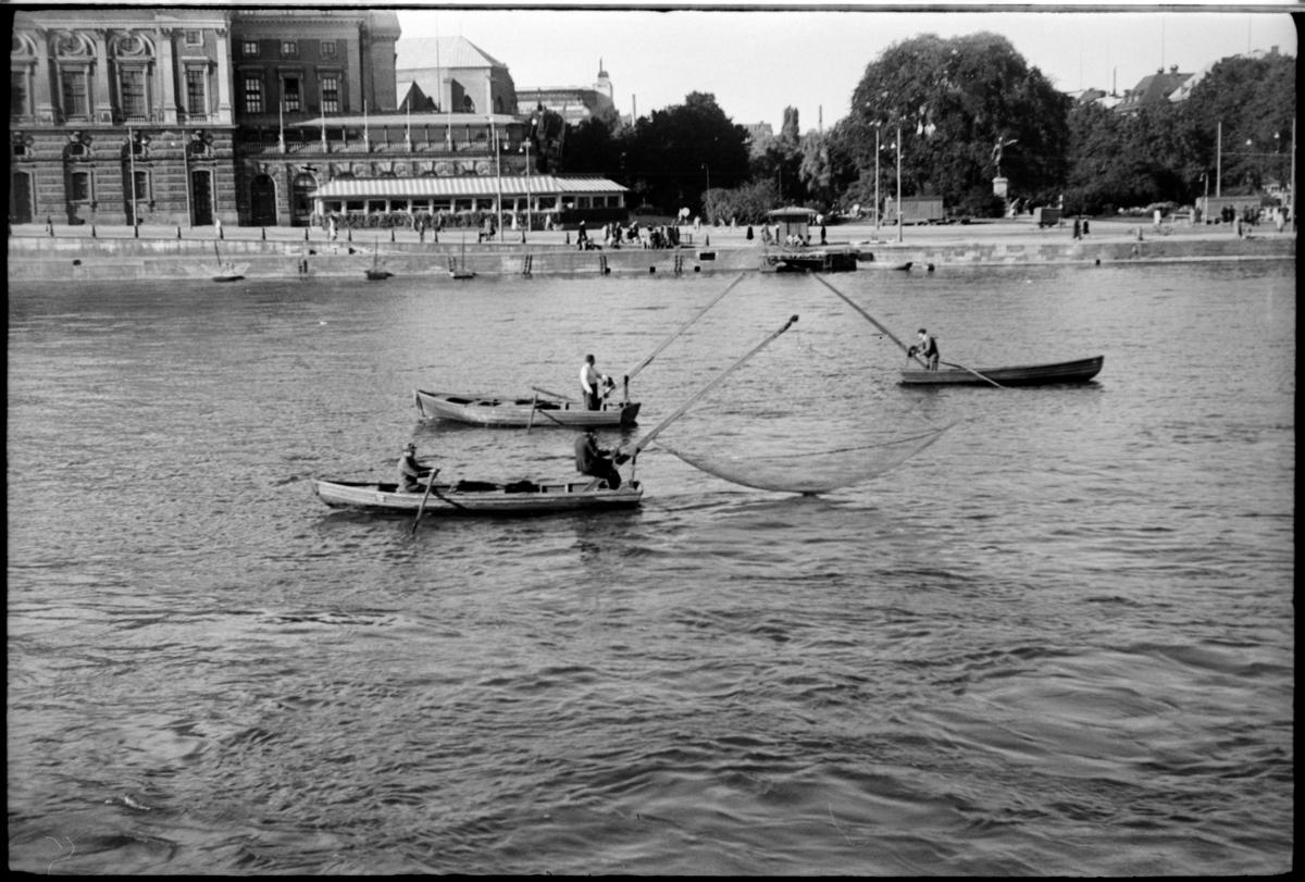 Tre håvbåtar med håvfiskare i Stockholm ström. Vid kajkanten ses Operan och Kungsträdgården.