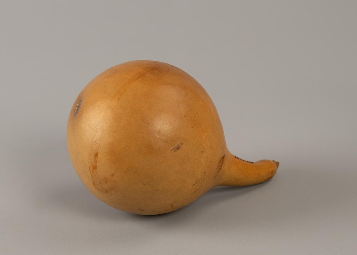Rund frukt med en smal kort hals, og glatt gyllen overflate. Løse fruktkjerner inni, ingen åpning.