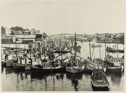 Smedasundet sett mot sydøst, 1947, fra Hasseløybroen.