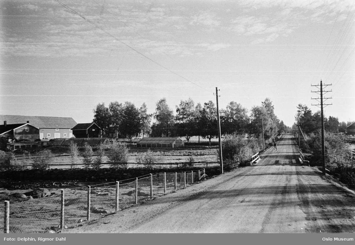 vei, bro, elv, kulturlandskap, Midtskogen gård, drivhus, telefonstolper