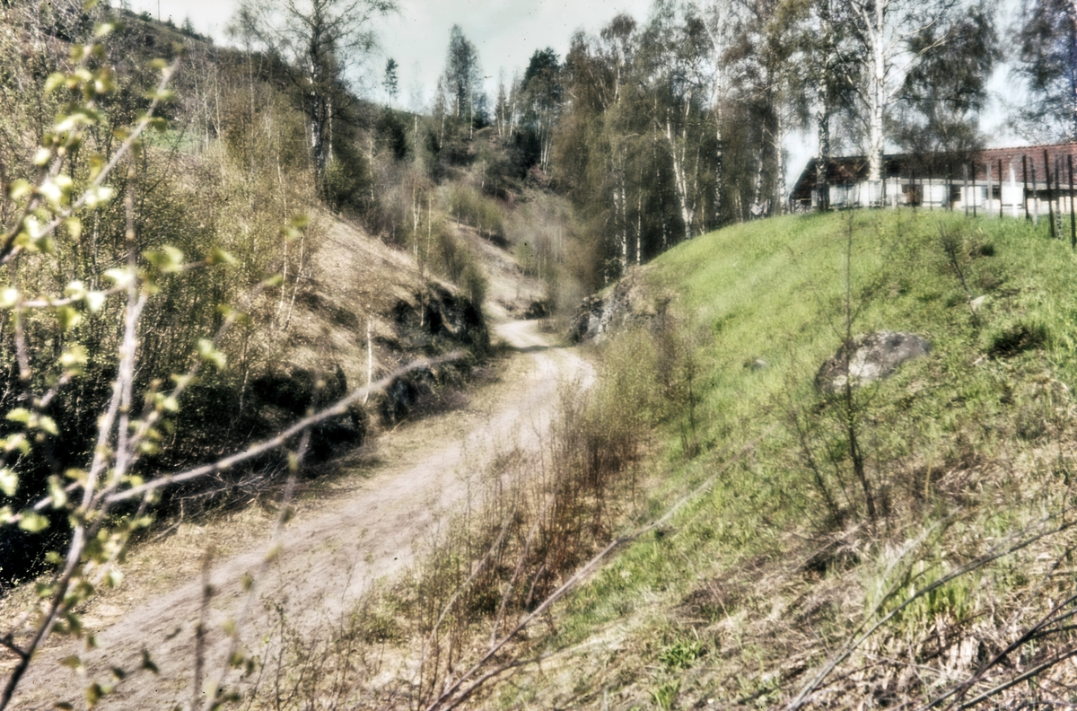 Parti av nedlagte Røykenvikbanen nær Røykenvik
