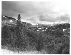 Over fjell og dal fra Misvær til Saltdalen