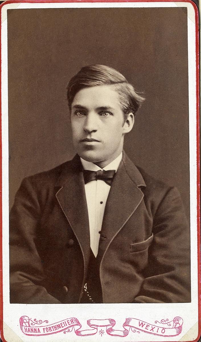 Foto av en ung man i kavajkostym med väst, stärkkrage och fluga. Bröstbild, halvprofil. Ateljéfoto.