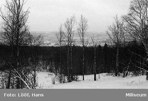 Vinterbilder på A 6 övningsfält.