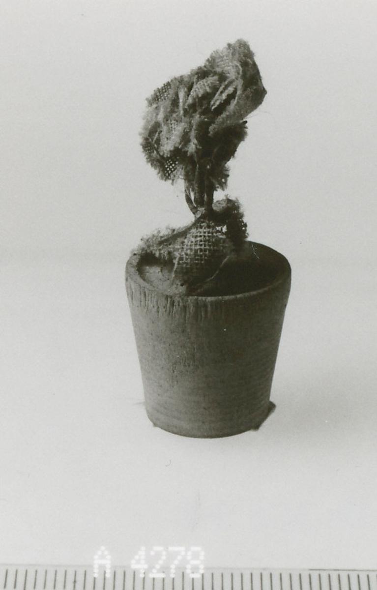 Blomst i potte