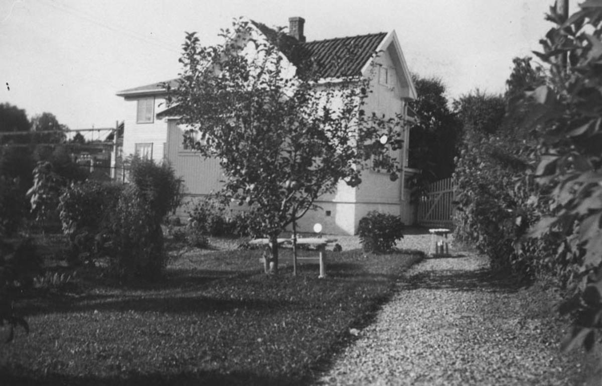 Haven til fotograf Nielsen..