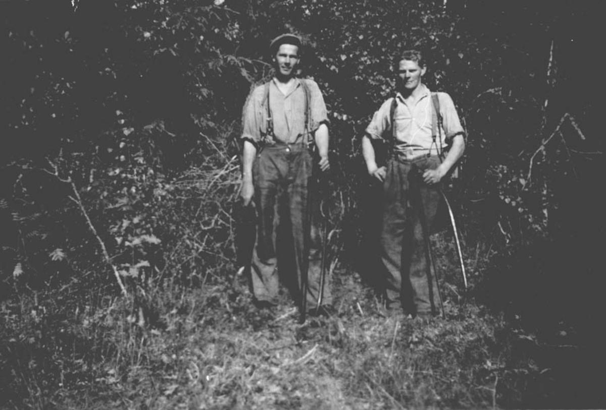 Skogsarbeide. Fra v.: Kåre Gjevik og Erling Fjeldstad