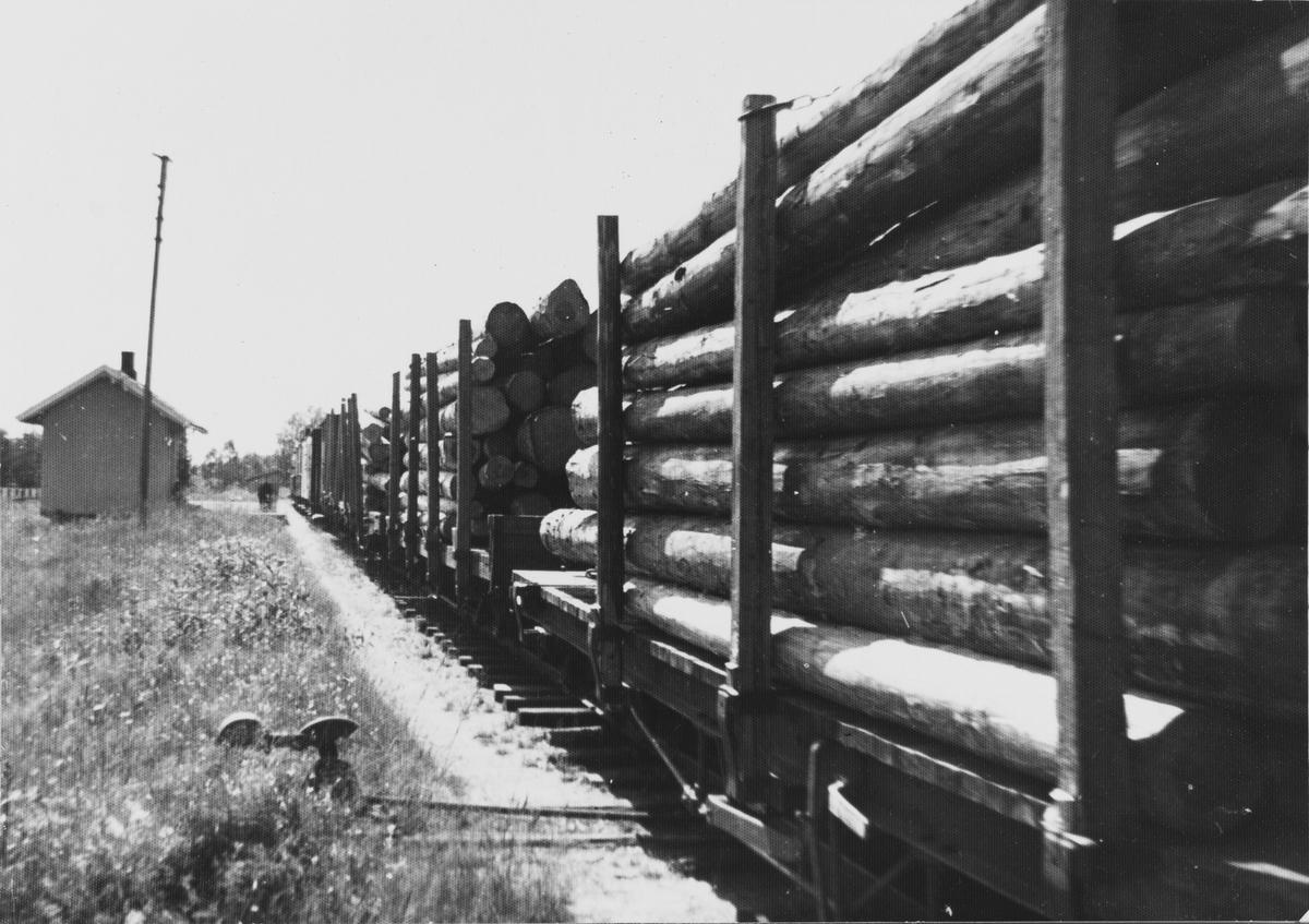 Tog retning Sørumsand med diverse tømmervogner gjør opphold på Hornåseng stasjon.