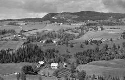 Flyfoto, Furnes, Høsbjøråsen,Skjellungberg i øvre venstre. H