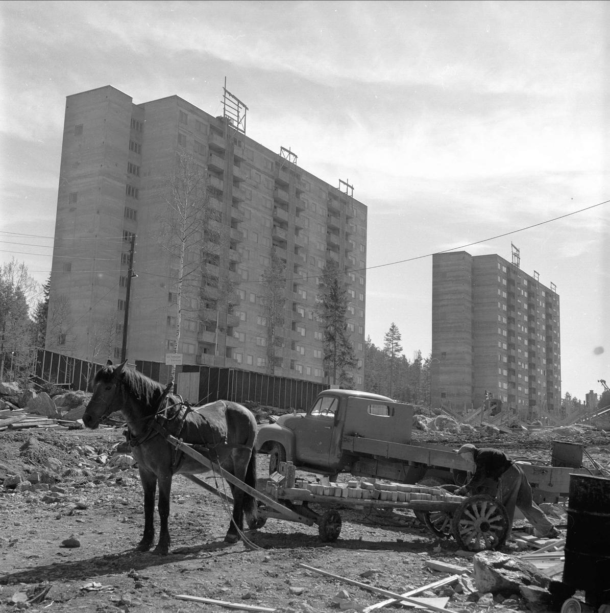 Bølerlia, Oslo, 19.06.1956. Boligblokker, lastebil og mann med hest og vogn.