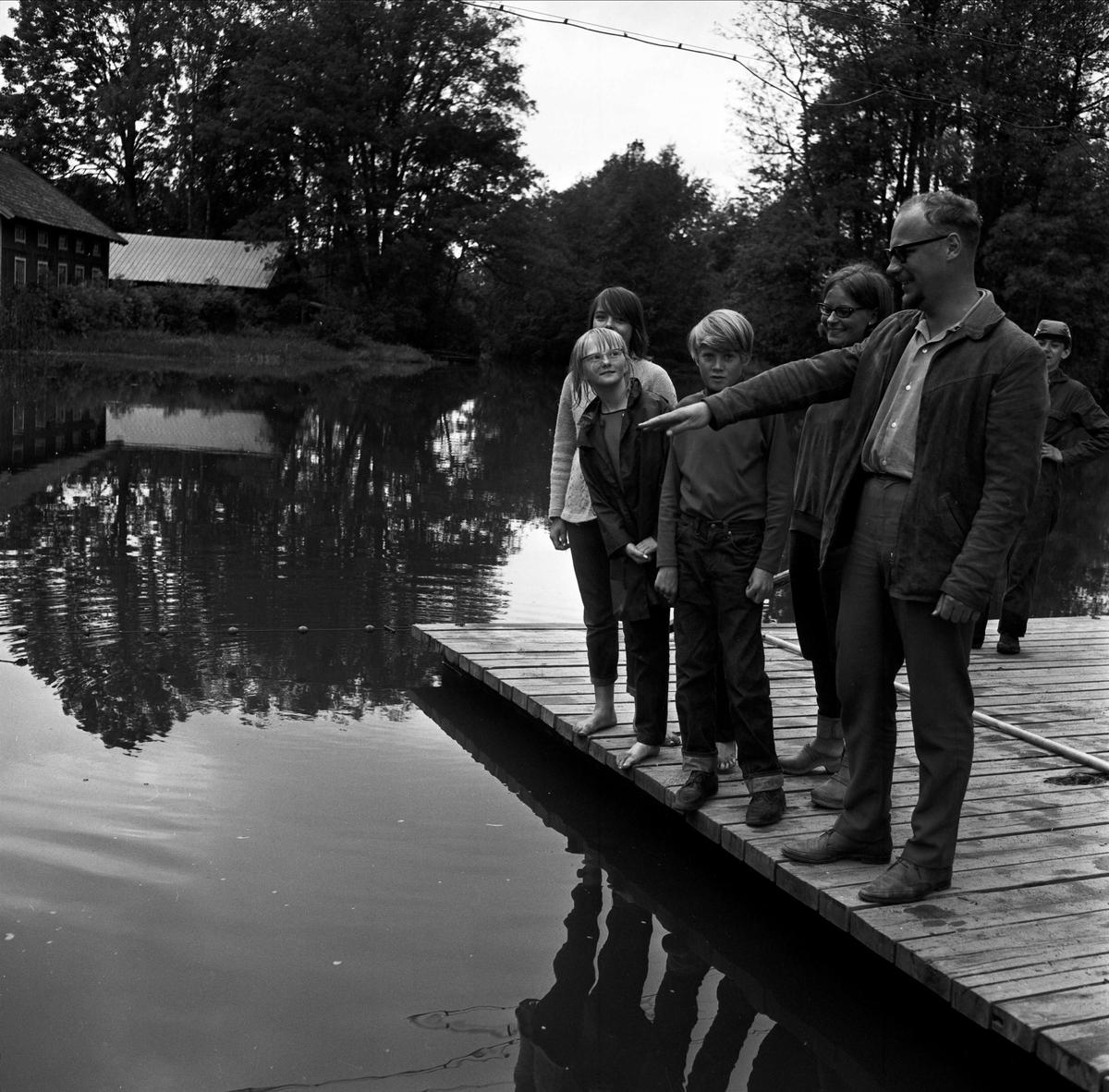 Simskolan i Ullfors, Tierps socken, Uppland 1967