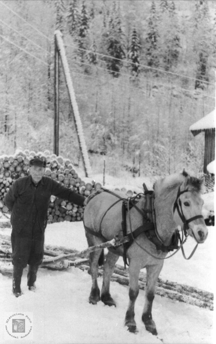 Herre og hest. Andreas Haugedal, Finsland.