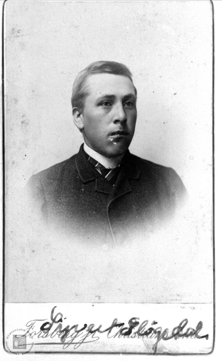 Portrett av Syvert Sløgedal, Øyslebø.