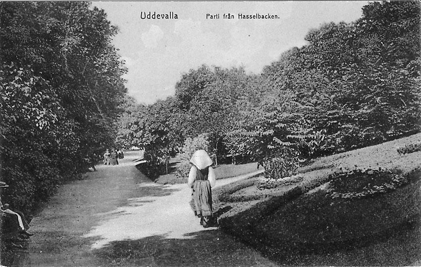 """Tryckt text på vykortets framsida: """"Uddevalla. Parti från Hasselbacken""""."""