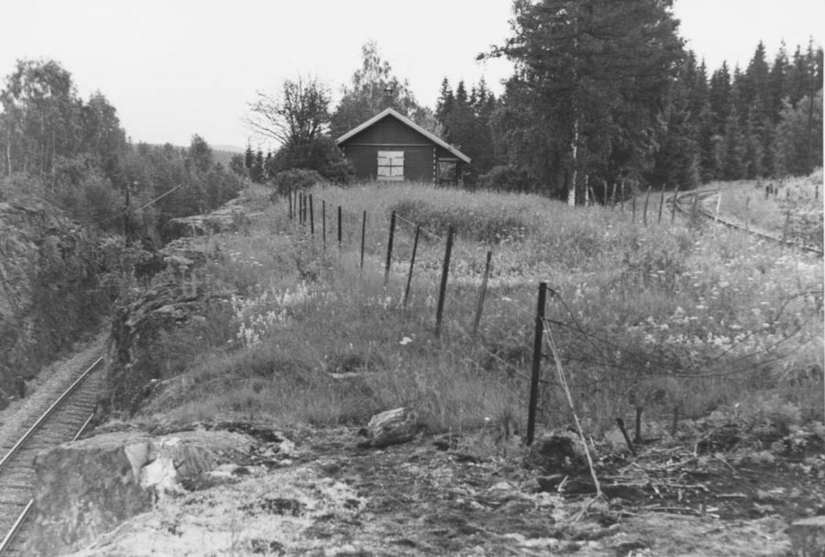 Strekningen Bingsfoss - Fossum ved Fjeldvang. Kongsvingerbanen til venstre.