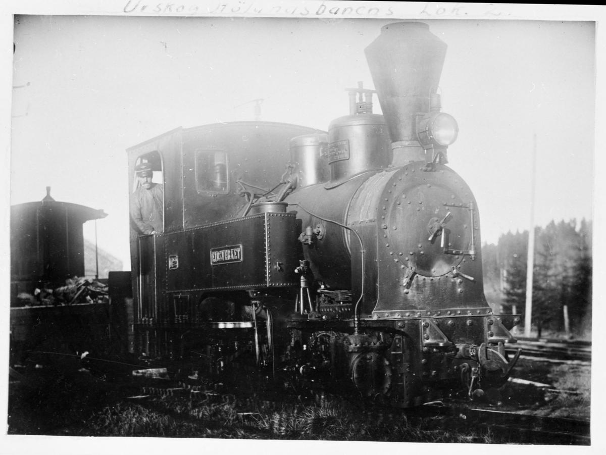 Lok nr 2 Eidsverket med lokomotivfyrbøter Jakob Bernhus på lokomotivførerplassen.  Bak lokomotivet en godsvogn lastet med ved .