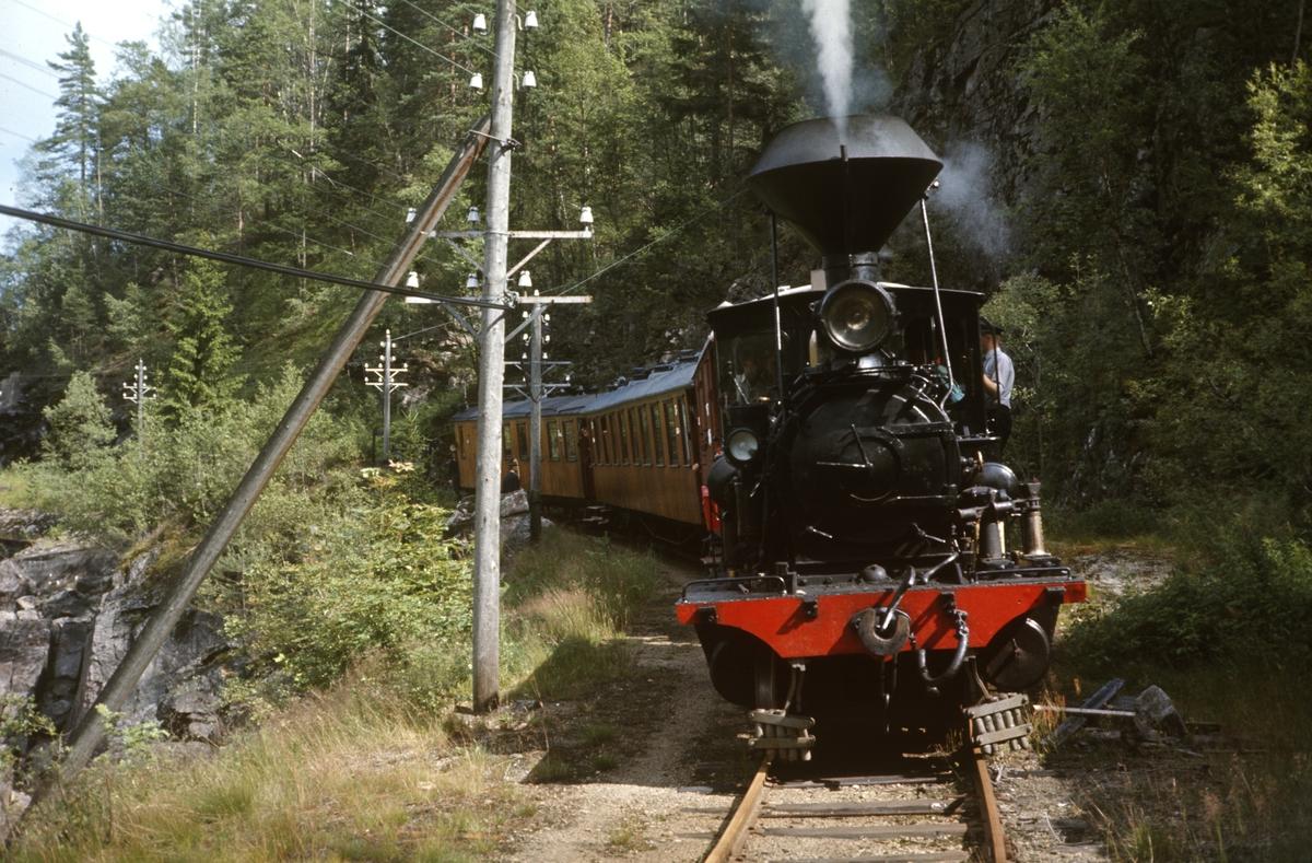 Tog på Setesdalsbanen